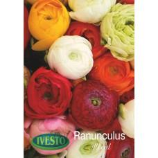3081 Ранункулус - 5 бр.
